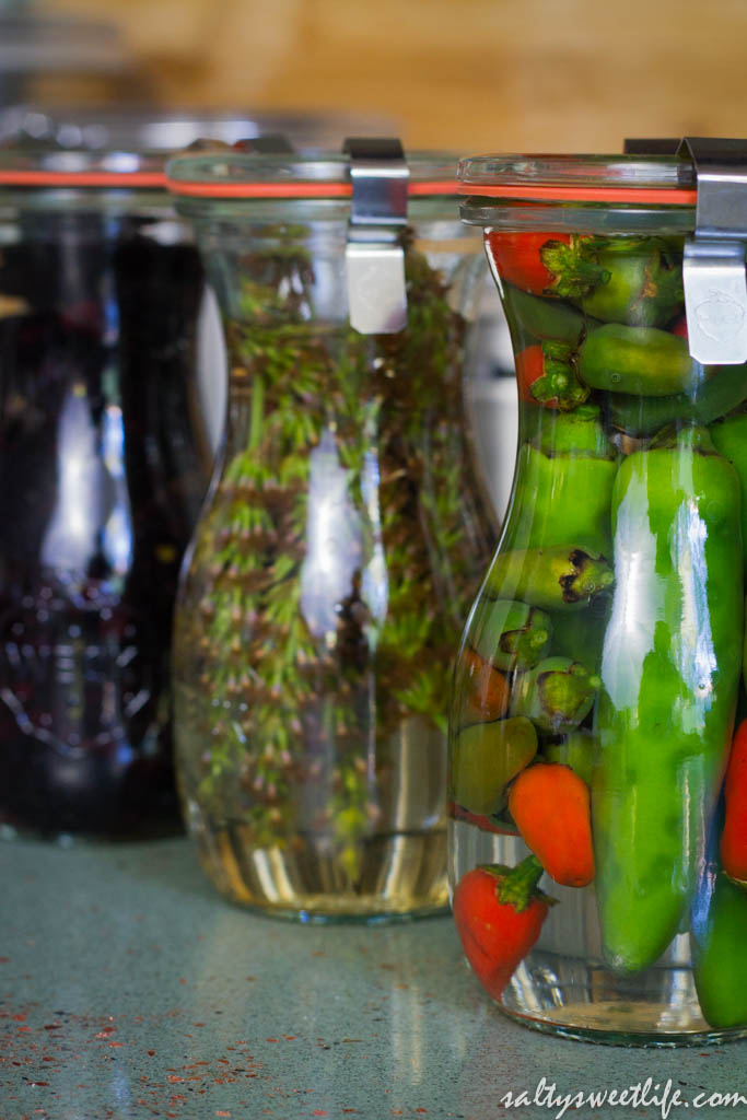 infusions-10
