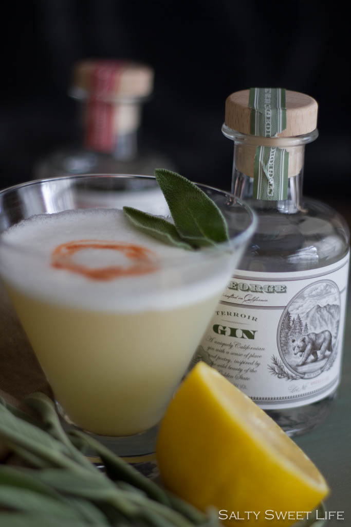 The Apollo - A Gin Cocktail made with St. George Terroir Gin - Salty Sweet Life