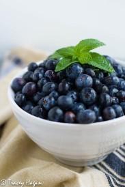 blueberries-2